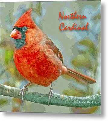Metal Print featuring the photograph Male Cardinal On Tree Branch by A Gurmankin