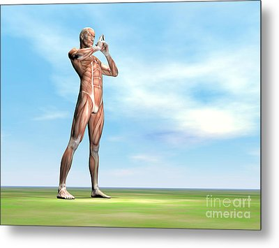 Male Musculature Standing On The Green Metal Print by Elena Duvernay
