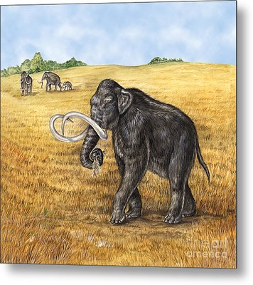 Mammoth Metal Print by Laurie OKeefe