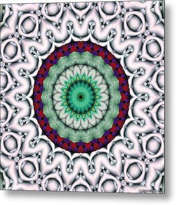 Mandala 9 Metal Print by Terry Reynoldson