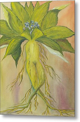 Mandrake Metal Print by Conor Murphy