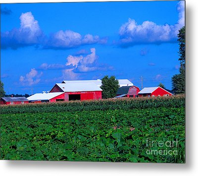 Many Layers Of Sights To Behold Metal Print by Tina M Wenger