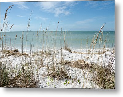 Marco Island Metal Print by Margaret Pitcher