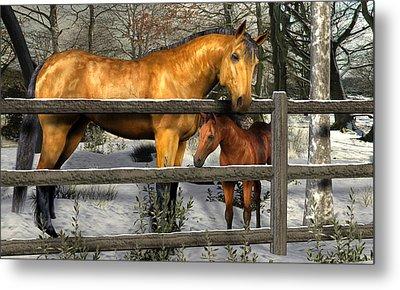 Mare And Foal In Winter Metal Print by Jayne Wilson