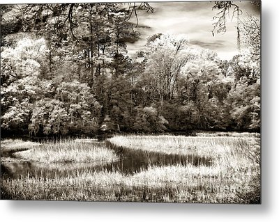 Marshes Metal Print by John Rizzuto