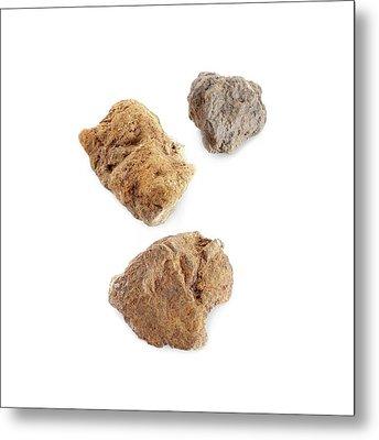 Martian Meteorites Metal Print by Science Photo Library