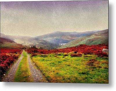 May It Be Your Journey On. Wicklow Mountains. Ireland Metal Print by Jenny Rainbow