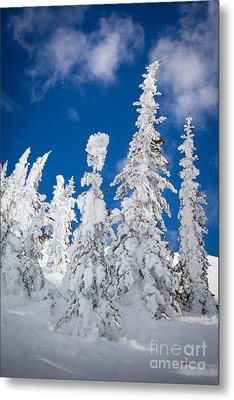 Mazama Frost Metal Print by Inge Johnsson