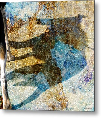 Me And My Shadow Metal Print by Judy Wood