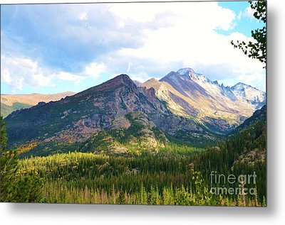 Meadow And Mountains Metal Print by Kathleen Struckle