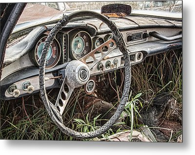 Merging With Nature Metal Print by Dale Kincaid