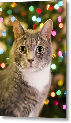Merry Christmas And Happy Holidays Metal Print by Mandy Wiltse