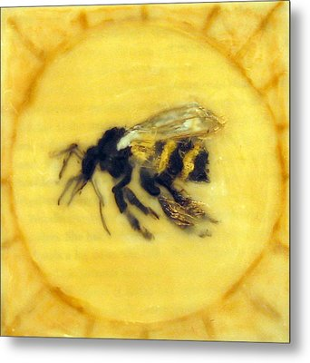 Message Of The Bees 2 Metal Print by Janelle Schneider
