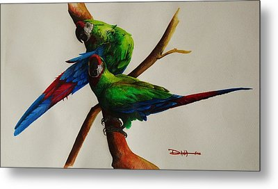Military Macaws Metal Print by Dana Newman