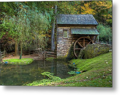 Mill Pond In Woods Metal Print by William Jobes