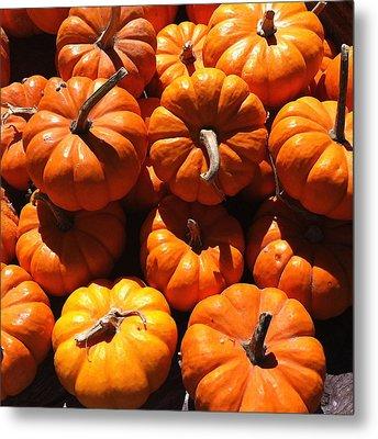 Mini Fall Pumpkins Metal Print by Denyse Duhaime