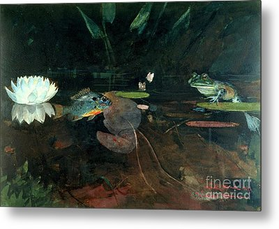 Mink Pond Metal Print by Pg Reproductions