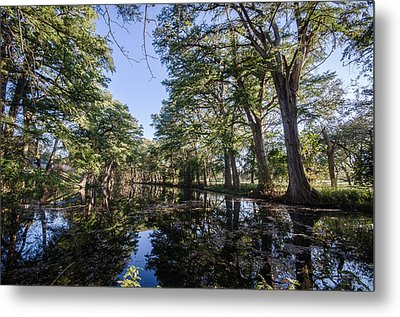 Mirror On The Frio Metal Print by Jeffrey W Spencer