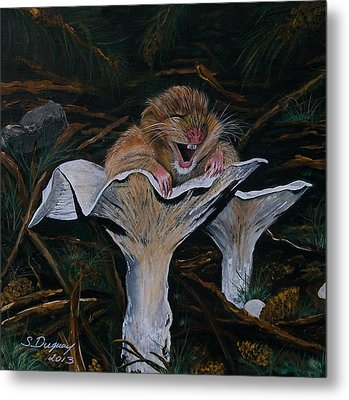 Mischievous Molly Metal Print by Sharon Duguay