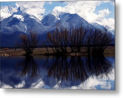 Mission Mountains Montana Metal Print by Thomas R Fletcher