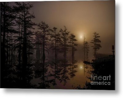 Mississippi Foggy Delta Swamp At Sunrise Metal Print by T Lowry Wilson