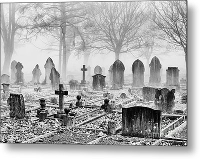 Mist And Shadow Metal Print by Tim Gainey