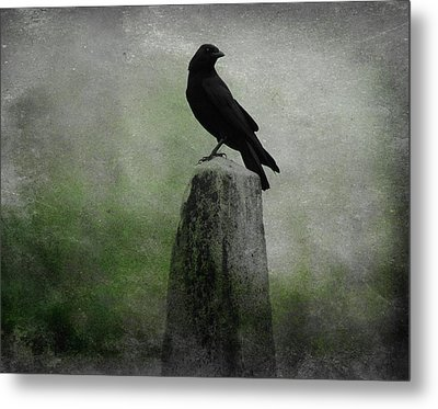 Mist Of Green Metal Print by Gothicrow Images