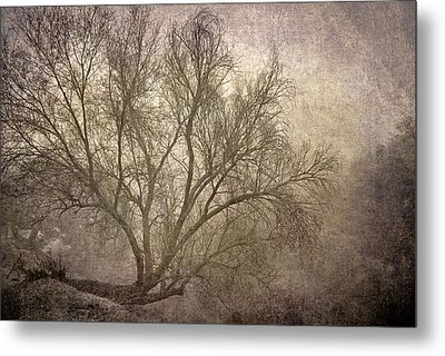 Mist Tree Metal Print by Guido Montanes Castillo