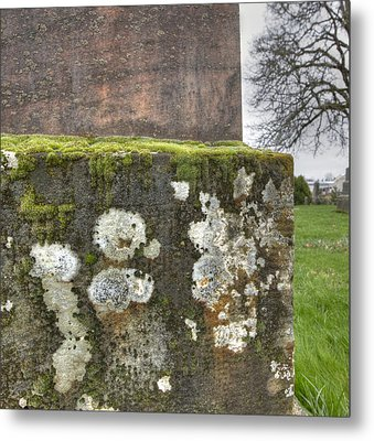 Moldy Above And Below Metal Print by Jean Noren