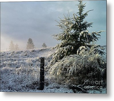 Moment Of Peace Metal Print by Rory Sagner