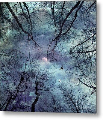Moonlight Metal Print by Stelios Kleanthous