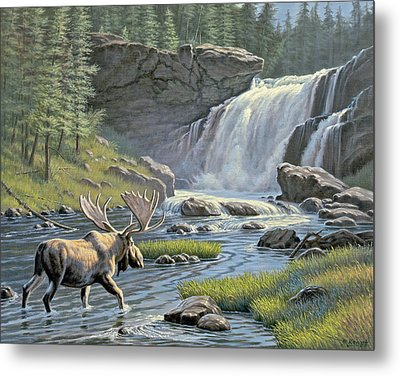 Moose Falls Metal Print by Paul Krapf