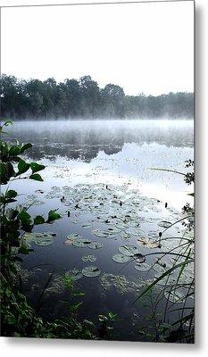 Morning At Lake Metal Print by Willo Breisacher