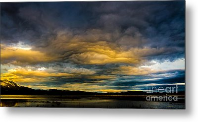 Morning Canvas Metal Print by Mitch Shindelbower