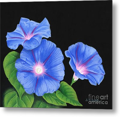 Morning Glories On Black Metal Print by Sarah Batalka