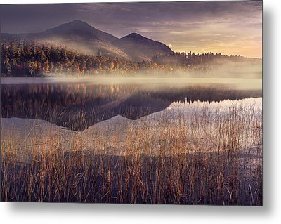 Morning In Adirondacks Metal Print by Magda  Bognar