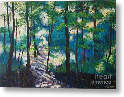 Morning Sunshine In Park Forest Metal Print by Arthur Witulski