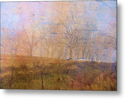 Morning Mist Metal Print by Jan Amiss Photography