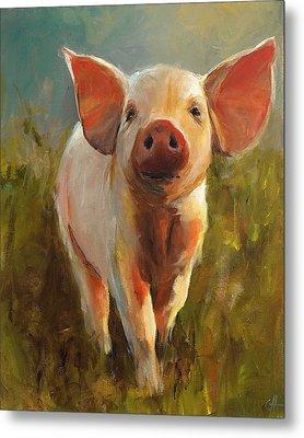 Morning Pig Metal Print by Cari Humphry