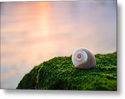 By The Sea Metal Print by Laura Fasulo
