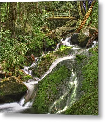 Mossy Creek Metal Print by Debra and Dave Vanderlaan