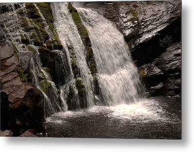 Mossy Drop Metal Print by Greg and Chrystal Mimbs