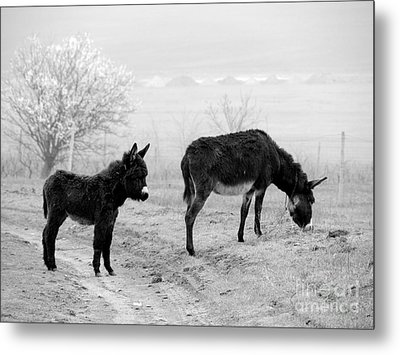 Mother And Child Metal Print by Gabriela Insuratelu