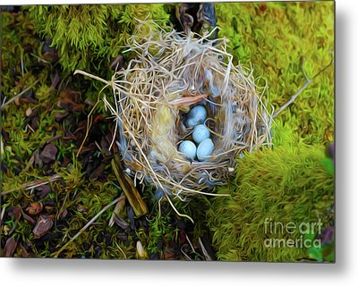 Mother Of Four Metal Print by Laura Brightwood