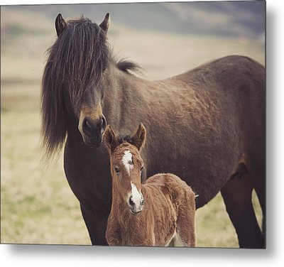 Motherly Love Metal Print by Irene Suchocki