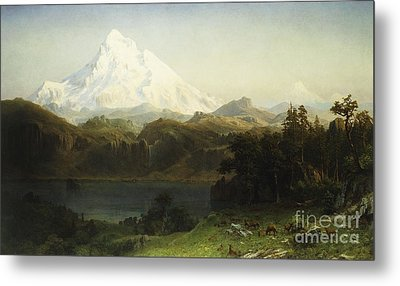 Mount Hood In Oregon Metal Print by Albert Bierstadt