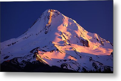 Mount Hood Last Light Metal Print by Darren  White