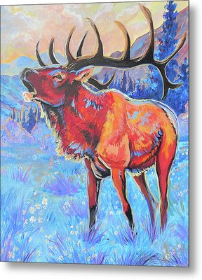 Mountain Lord Metal Print by Jenn Cunningham