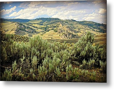 Mountains North Of The Lamar Metal Print by Marty Koch