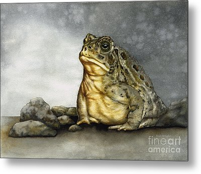 Mr. Woodhouse Toad Metal Print by Nan Wright